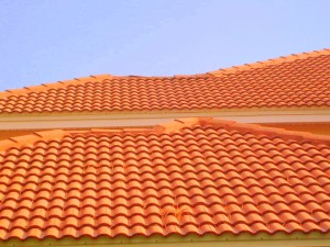 Clermont FLorida Tile Roof Cleaning